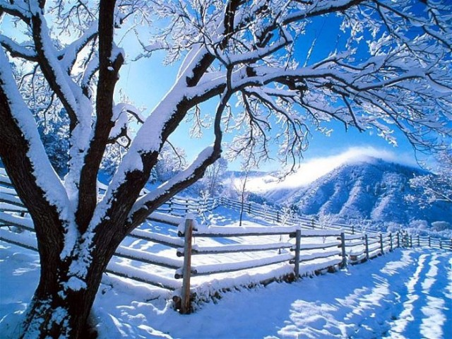 winterseason