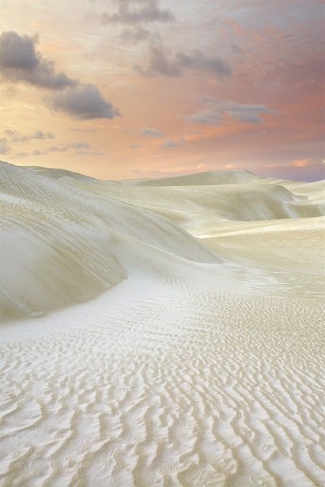 Sand Dunes, Cervantes, Washington