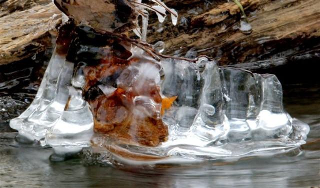 Ice 068BBB