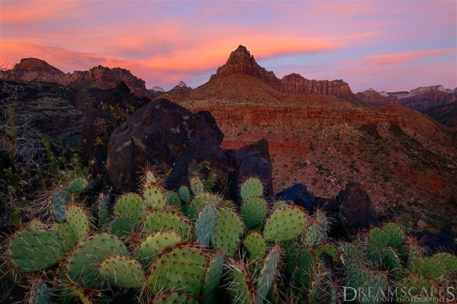 Kolob-Terrace-sunset,-Zion-National-Park,-Utah, Ian Plant