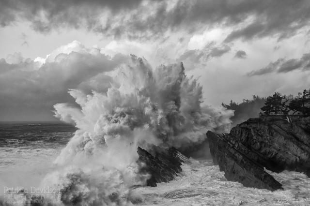 Crashing waves at Shore Acres State Park during high surf advisory along the Oregon Coast.
