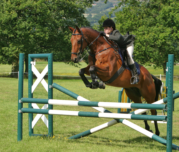 4sports-photography21-300x256@2xhorsejumping